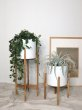 画像10: Wood Stand Planter / H68cm [White x Brown] (10)
