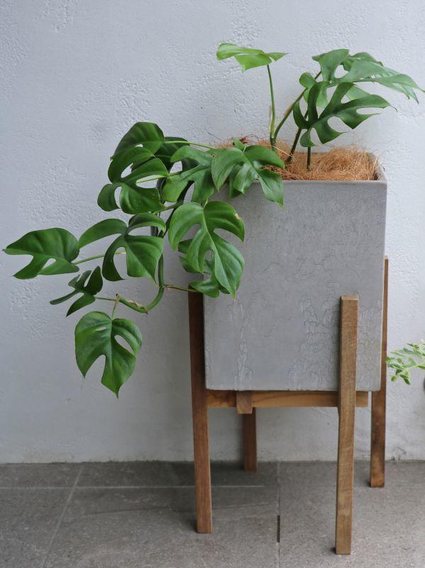 画像1: Wood Stand Planter(懸崖5〜6号鉢用) (1)